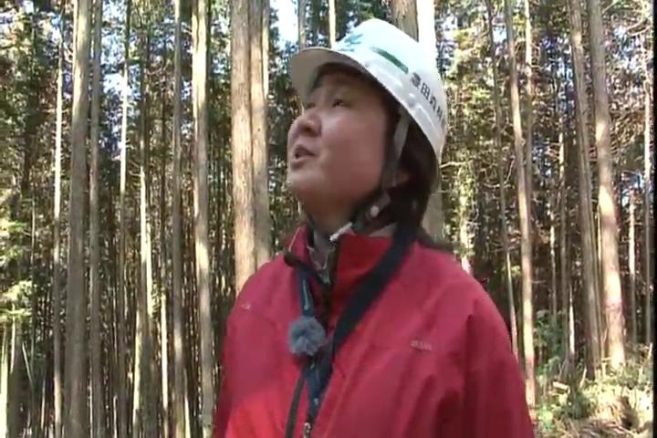 三河の山里アーカイブ 林業に賭ける思いは誰にも負けない