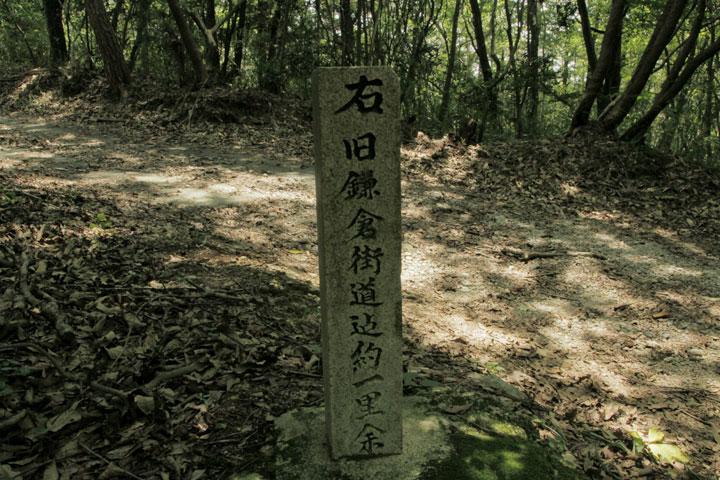 鴨之巣道の道祖神碑