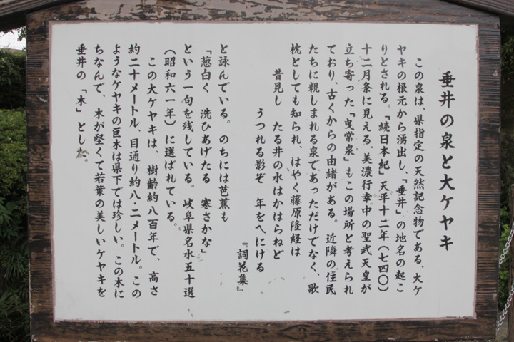 玉泉寺・垂井の清水・大ケヤキ