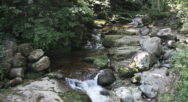 長良川源流 大日ヶ岳