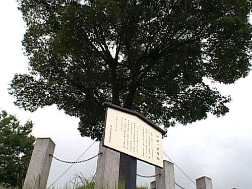 和田の一里塚