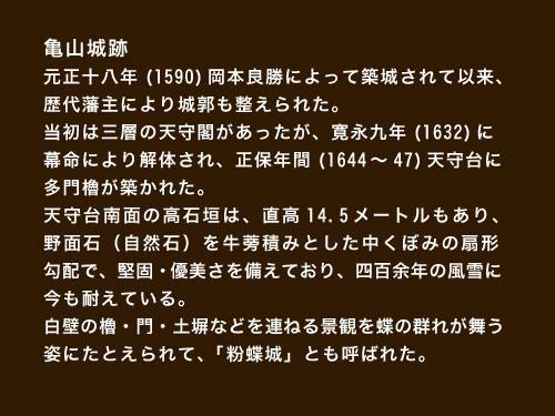 亀山城説明