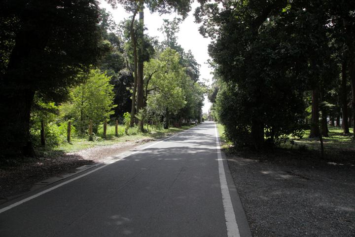 砥鹿神社境内を通る伊那街道
