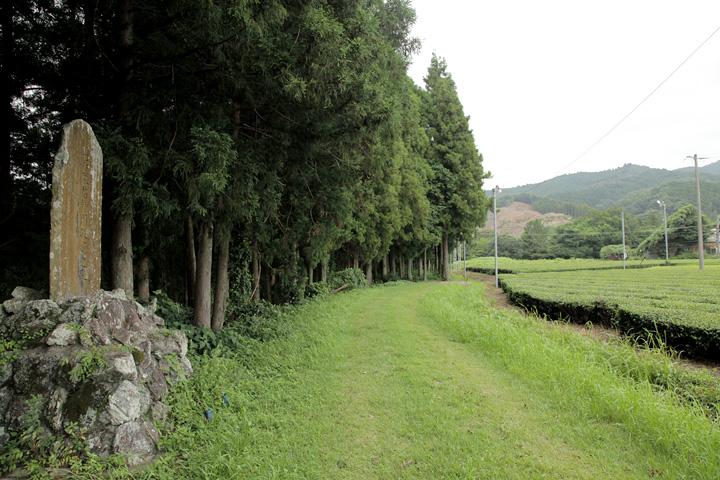 鳥居強右衛門磔の碑と鳶ヶ巣山砦跡