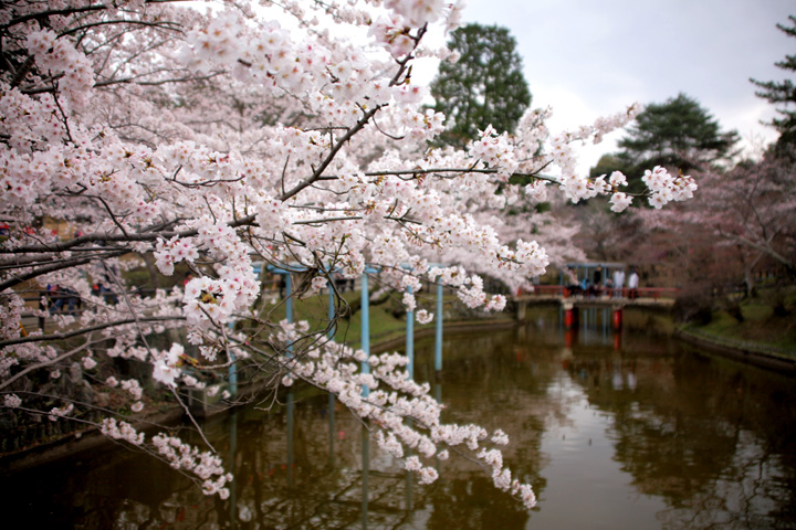 偕楽公園(津市)