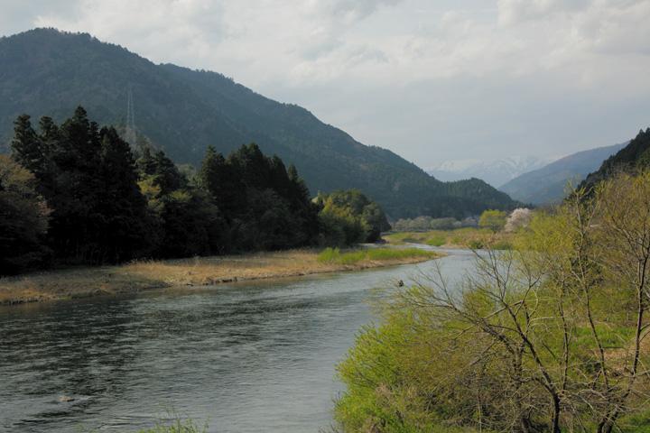 根尾川(水鳥駅~高尾駅)