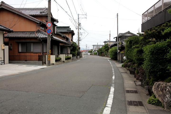稲木を行く街道