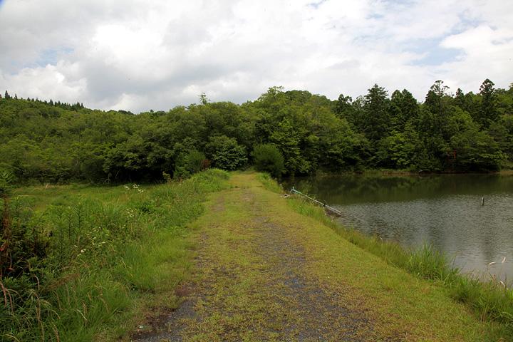 池のほとりにある祠と鳥居へ向かう
