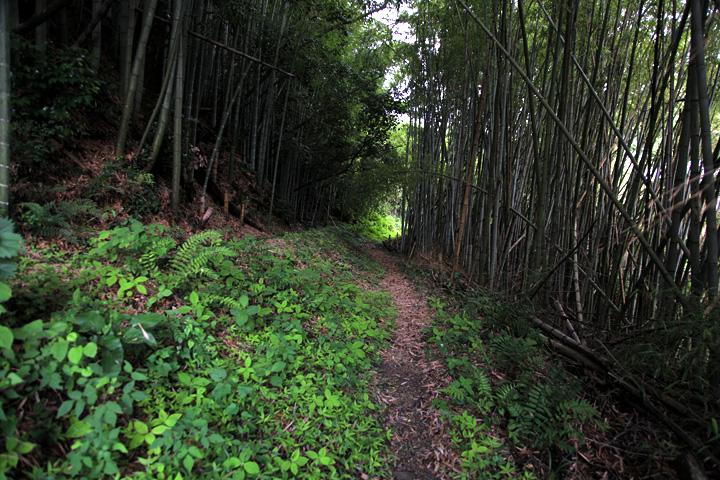 橋本地蔵へ向かう大和街道