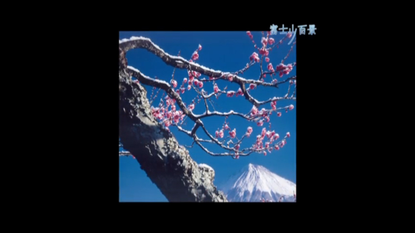 富士山に愛される街!富士市-富士山百景