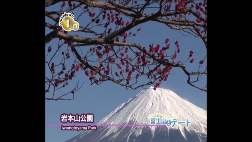 富士山に愛される街!富士市-富士山とデート
