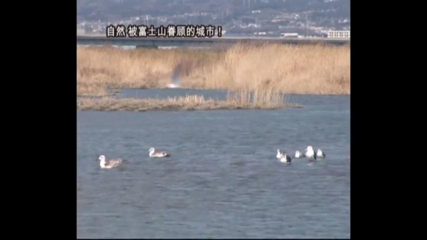 富士山に愛される街!富士市-自然(中国語)