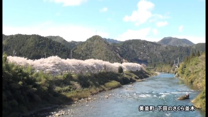 郡上満喫(日本語版) 自然・花を満喫
